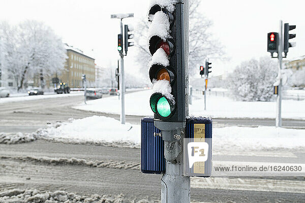 Traffic lights at winter