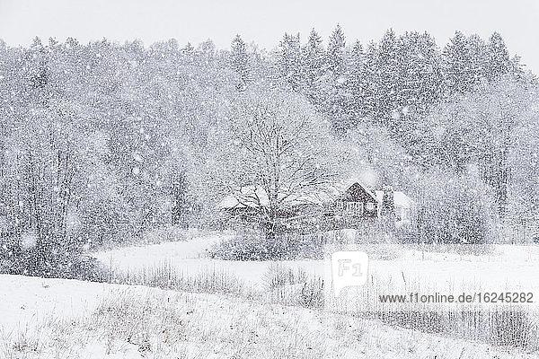 Haus im Winter