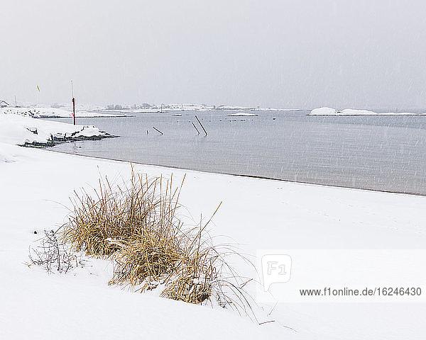 Winterliche Küste