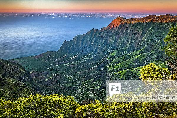 View of Na Pali Coast and Kalalau Valley from Pu'u O Kila Lookout  sunset glow on the rugged cliff  Koke'e State Park; Kauai  Hawaii  United States of America