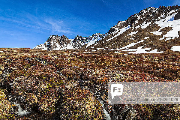 Stream through tundra field 'The Ballpark' under blue sky. O'Malley Peak and False Peak are in the background. Chugach State Park  South-central Alaska in spring; Alaska  United States of America