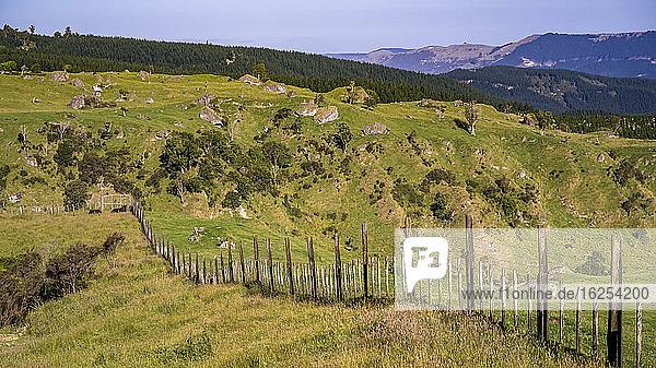 Ein Zaun verläuft entlang des hügeligen und zerklüfteten Ackerlandes von Neuseeland; Nordinsel  Neuseeland