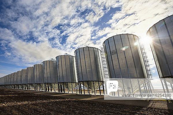 Silver metal grain storage bins in a row against a blue sky with cloud; Alberta  Canada