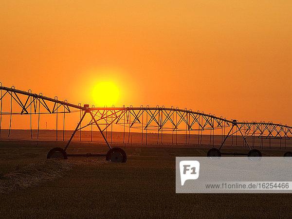 Landwirtschaft - Zentrales Pivot-Bewässerungssystem  das sich bei Sonnenaufgang als Silhouette auf einem Heufeld abzeichnet. Das zentrale Bewässerungssystem ist nicht in Betrieb  da das Heufeld vor dem Ballenpressen geschnitten und zum Trocknen geschwadet wurde / Alberta  Kanada.