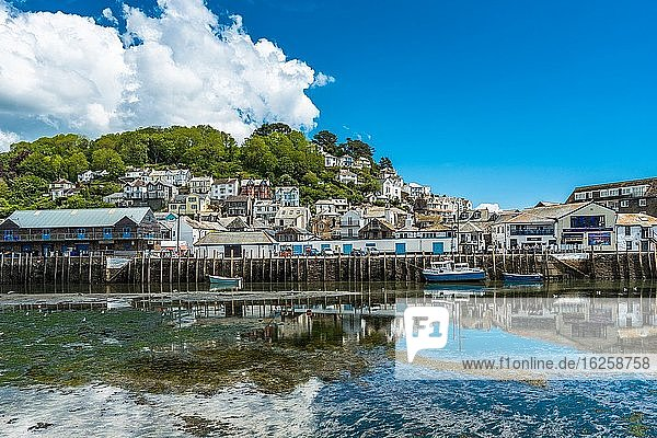 The small coastal town of Looe with hillside houses and a beach. Cornwall  UK.