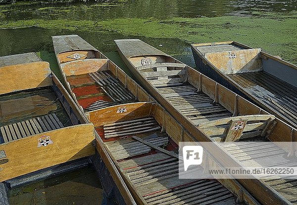 Boats of the Oxford University Rowing Clubs by the river Thames in Oxford England UK.