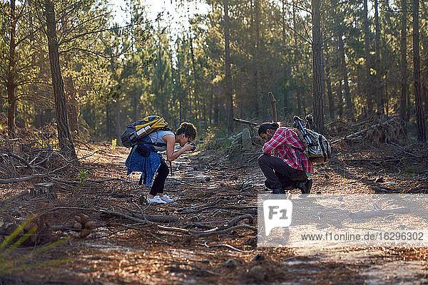 Junges Wanderpaar mit Kamera im Wald