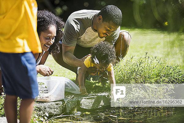 Familie spielt am Rand eines sonnigen Sommerteichs
