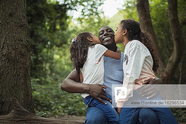 Glückliche  liebevolle Töchter küssen Vater unter Bäumen im Wald