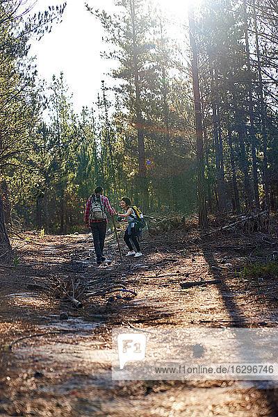 Junges Paar wandert in sonnigen Wäldern