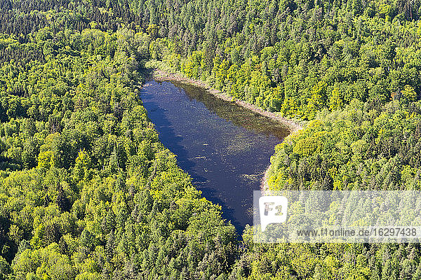 Germany  Baden-Wurttenberg  Aerial view of pond in forest between Hegne and Dettingen
