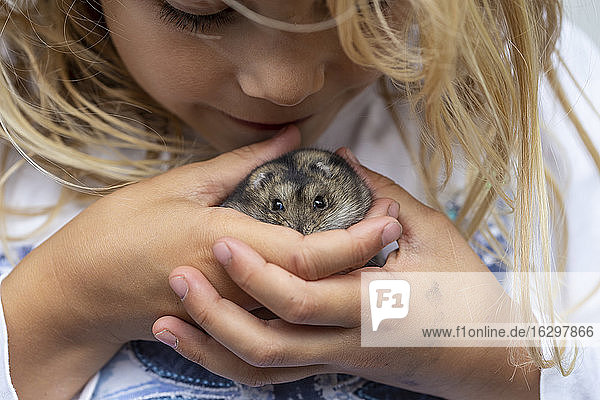 Close-up of cute girl playing with hamster