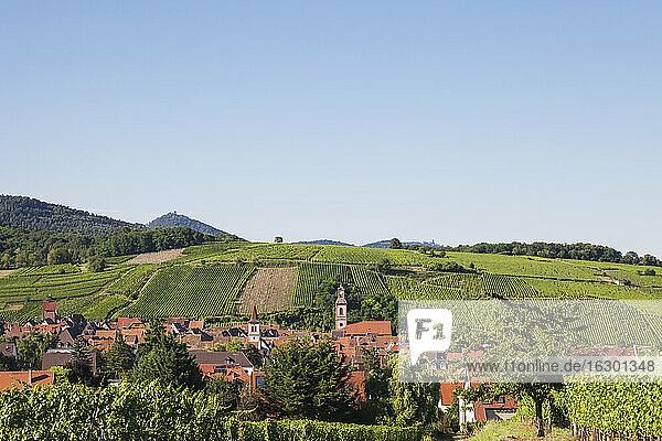 France  Haut-Rhin  Riquewihr  Clear sky over countryside village and surrounding vineyards in summer