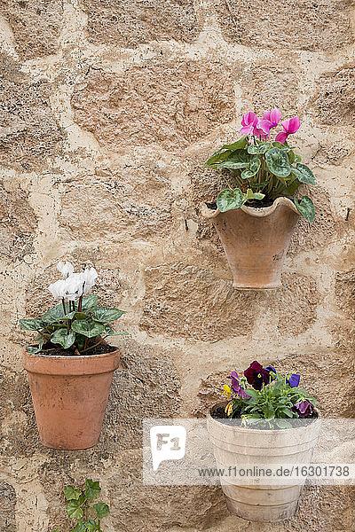 Spain  Majorca  Valldemossa  clay hanging basket on facade