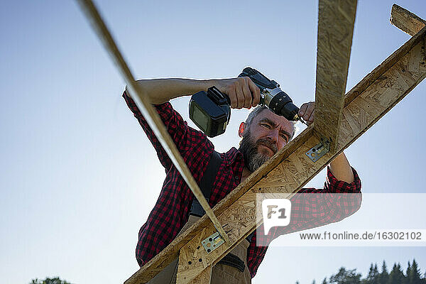Carpenter drilling wooden plank with power tool against clear sky