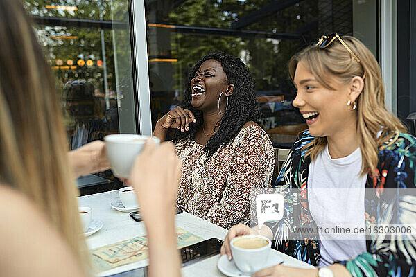 Glückliche Freundinnen treffen sich in einem Cafe Glückliche Freundinnen treffen sich in einem Cafe