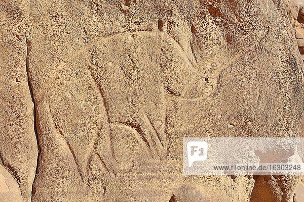 North Africa  Sahara  Algeria  Tassili N'Ajjer National Park  Tadrart  neolithic rock art  rock engraving of a rhino