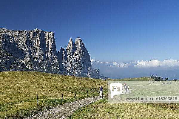Italy  South Tyrol  Seiseralm and Schlern group