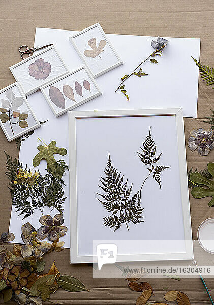 Dry leaves on white frames over cardboard