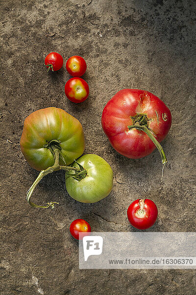 Oxheart tomatoes on stone surface