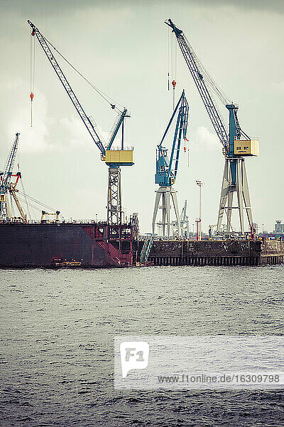 Germany  Hamurg  cranes at container terminal Tollerort
