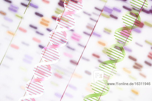 DNA helix and multi-colored sequence chart