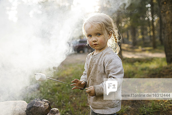 Portrait of girl (2-3) roasting marshmallow over campfire  Wasatch Cache National Forest
