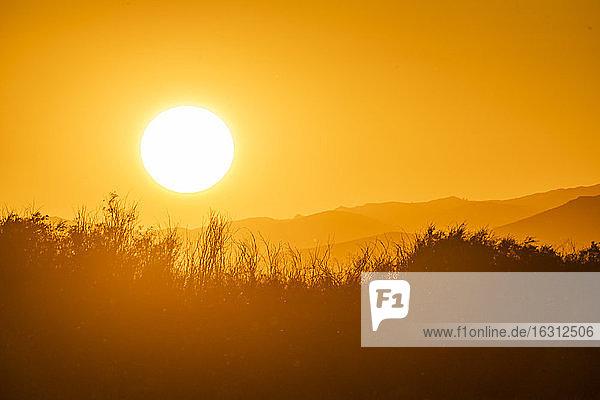 USA  Idaho  Sun Valley  Sonnenaufgang über einer Bergwiese