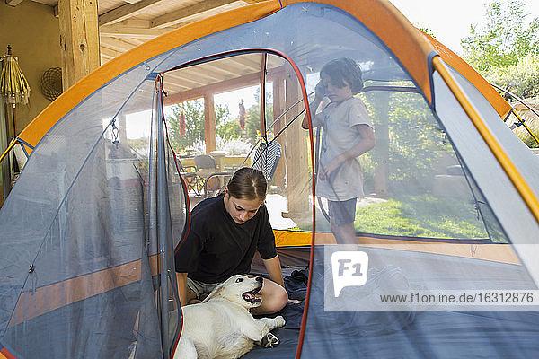 Teenagerin und ihr jüngerer Bruder bauen auf grünem Rasen ein Zelt auf