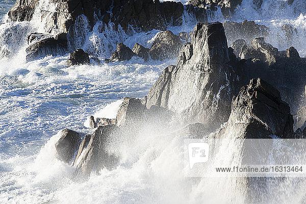 Blick auf die felsige Küste bei De Kelders  Südafrika.