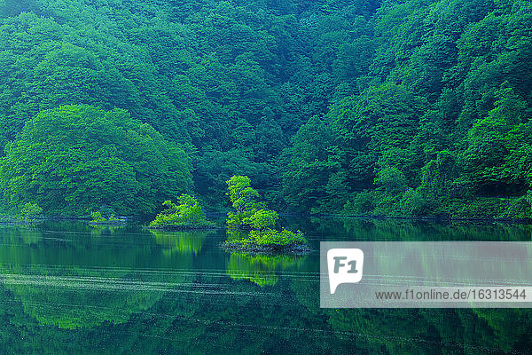 Fukushima Prefecture  Japan