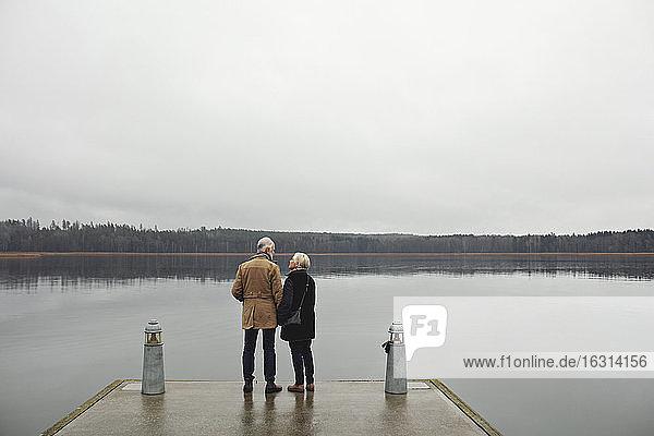 Rückansicht eines älteren Ehepaares  das sich am See vor klarem Himmel unterhält