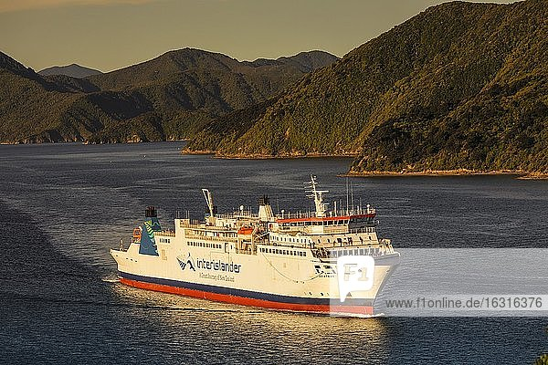Arriving ferry from the North Island at sunset  Picton  Marlborough Sounds  South Island  New Zealand  Oceania