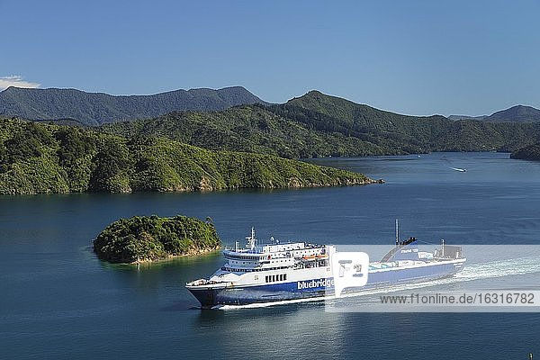 Arriving ferry from the North Island  Picton  Marlborough Sounds  South Island  New Zealand  Oceania