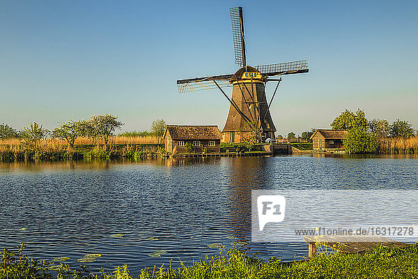 Windmill at sunset  Kinderdijk  UNESCO World Heritage Site  South Holland  Netherlands  Europe