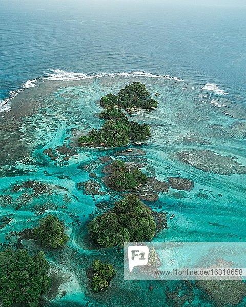 Luftaufnahme  tropische Mangroveninseln in der Karibik  Escudo de Veraguas  Panama  Mittelamerika