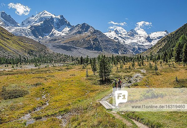 Hiking trail in the Roseg Valley  Val Roseg with Piz Roseg  Piz Glüschaint and Roseg Glacier  Pontresina  Bernina Alps  Upper Engadine  Engadine  Grisons  Switzerland  Europe