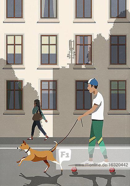 Dog on leash pulling boy riding skateboard on city street