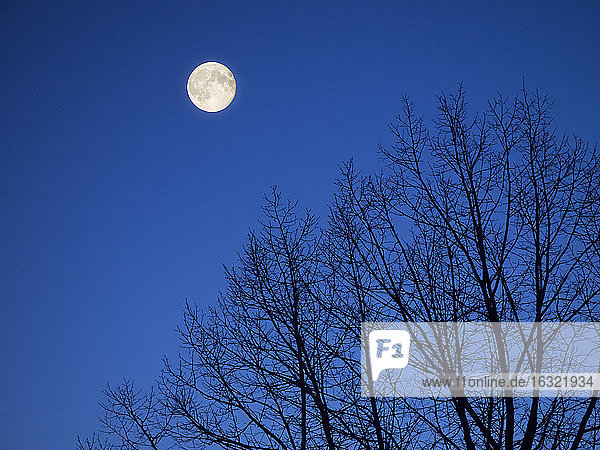 Full moon at Blue Hour