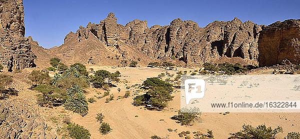 Africa  Algeria  Sahara  Tassili N'Ajjer National Park  Oued Essendilene  Panorama