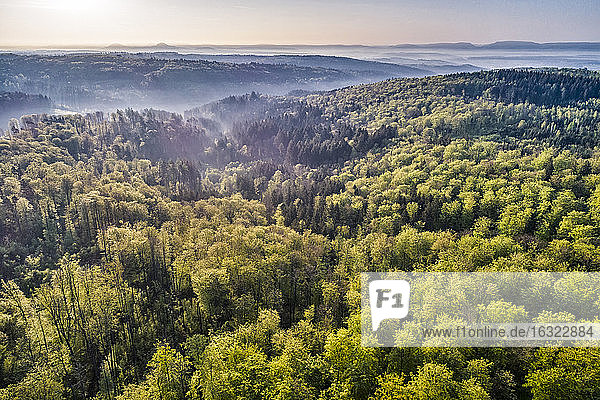 Germany  Baden-Wuerttemberg  Swabian Alb  Nassach Valley and Fils Valley  Aerial view of forest and fog