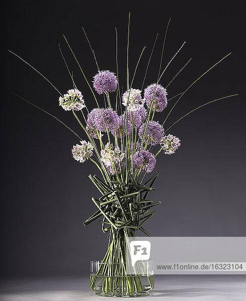 Floral arrangement of Allium,  Allium roseum,  Equisetum,  Xanthorrhoea australis