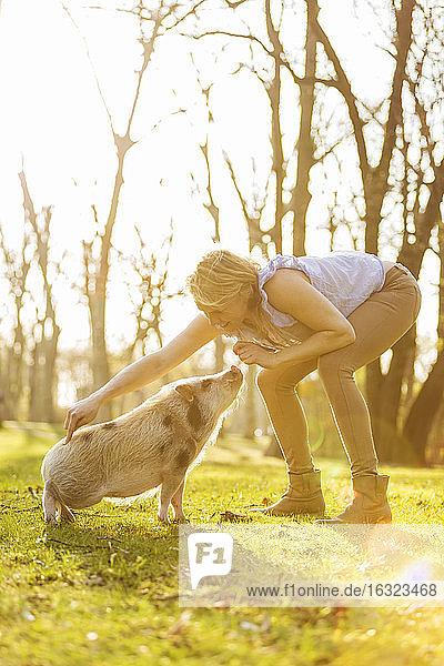 Woman taming piglet in park