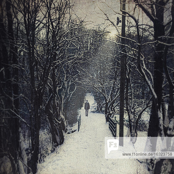 Germany  near Wuppertal  man walking on forest path in winter  textured effect