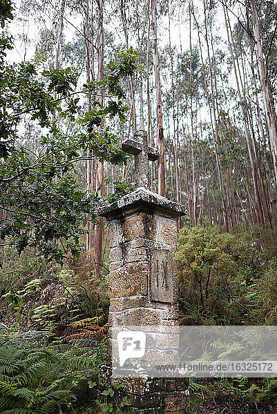 Spain  Ferrol  crucifix made of stone in the forest