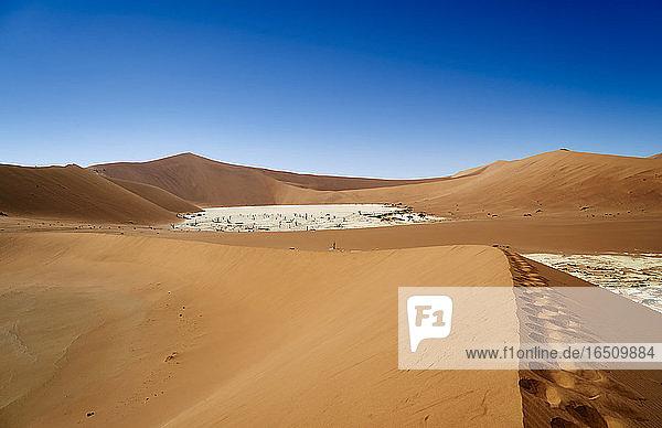 Sossusvlei  Namib Naukluft Nationalpark  Namibia  Südafrika  Afrika