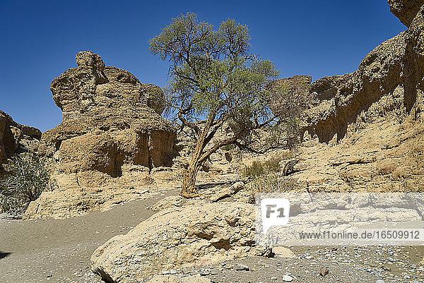 Sesriem-Canyon  Namib Naukluft Nationalpark  Namibia  Südafrika  Afrika
