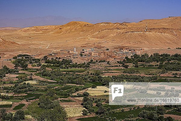 Oasis Tinerhir with old mud houses and newly constructed buildings  Tinerhir  Souss-Massa-Draa  High Atlas  Morocco  Africa