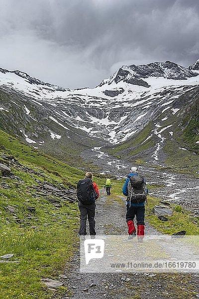 Wanderer im Tal bei schlechtem Wetter  hinten Gletscher Schlegeiskees  schneebedeckte Berggipfel  Hoher Weiszint  Berliner Höhenweg  Zillertal  Tirol  Österreich  Europa