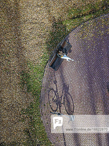 Aerial view of young woman sitting alone on bench in autumn park